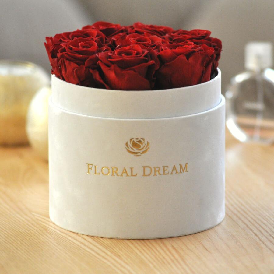 wieczne róże flower box biały medio