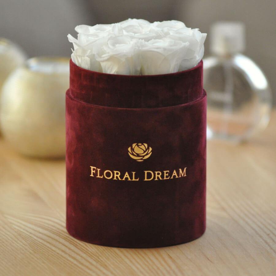 bordowy flower box białe róże wieczne