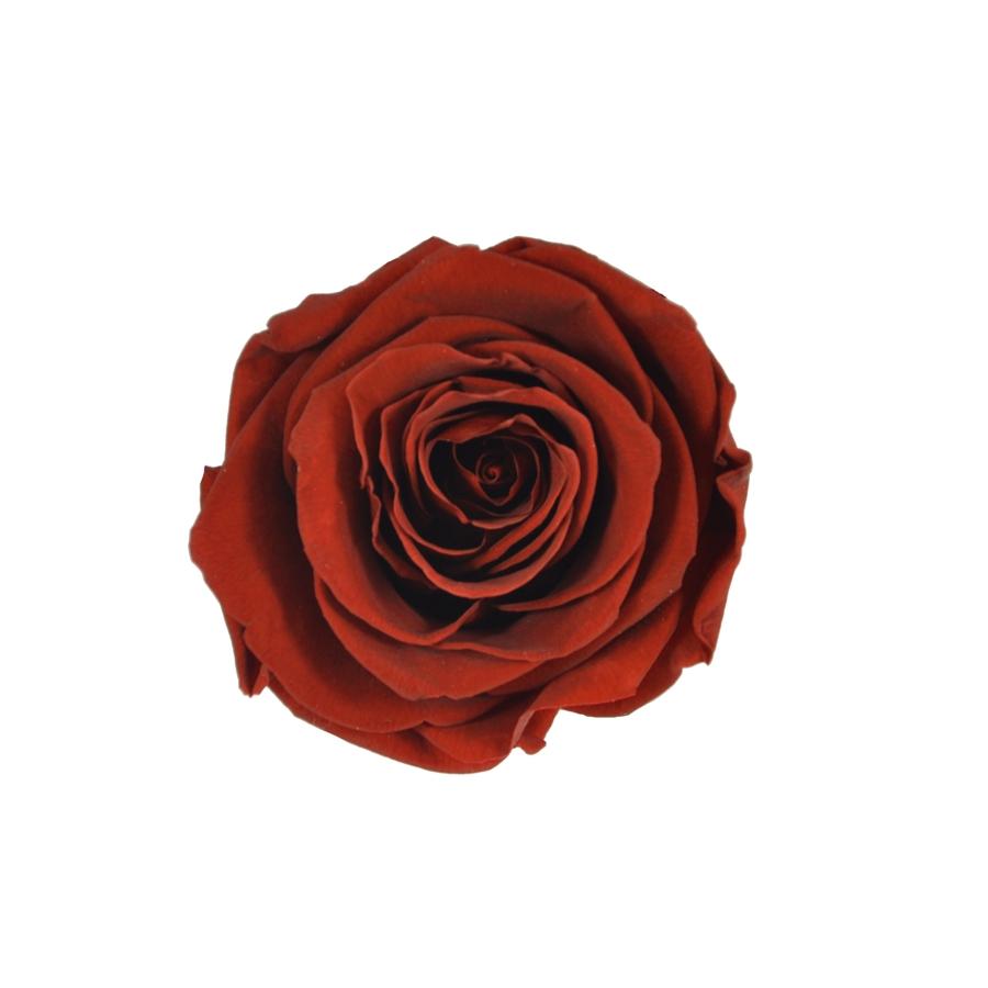 wieczna róża flat lay flower box