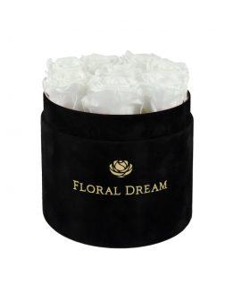 wieczne róże flower box medio edition
