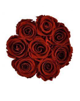 czerwone wieczne róże w rozmiarze L