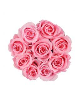 wieczne róże mini flat lat flower box