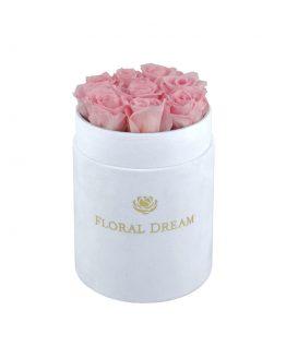 flower box z wiecznymi różami