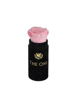 Flower box z różową różą